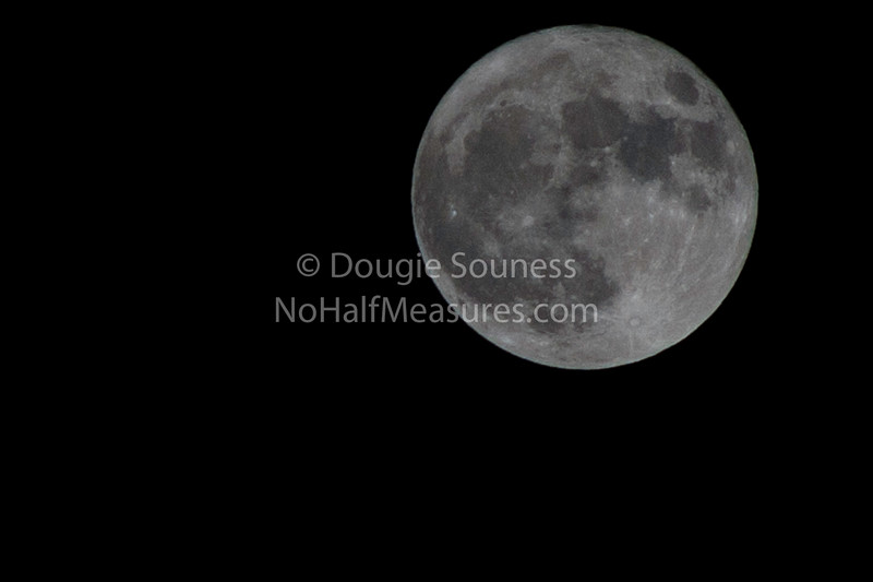 """'Perigee Moon'<br />  19 March 2011<br />  Closer, therefore """"bigger & brighter"""" apparently.<br />  Bearsden, Scotland"""