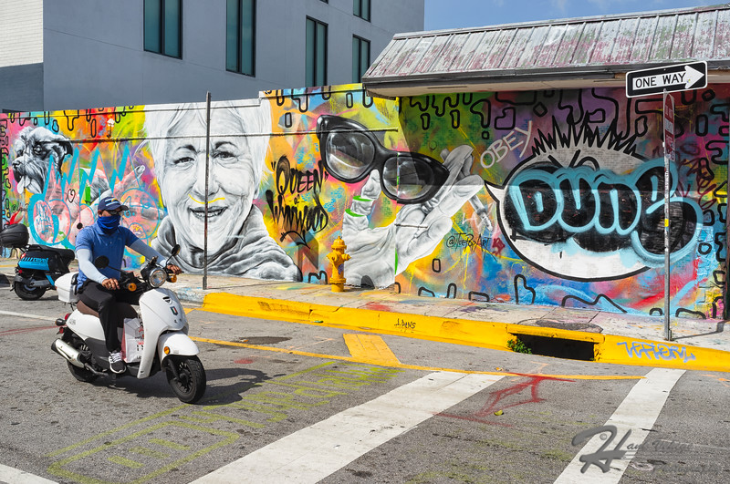 Wynwood, Miami_DSF41882102199