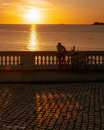 Yerba Mate by Sunset