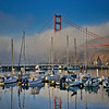 Golden Gate Bridge Emerging from the Fog
