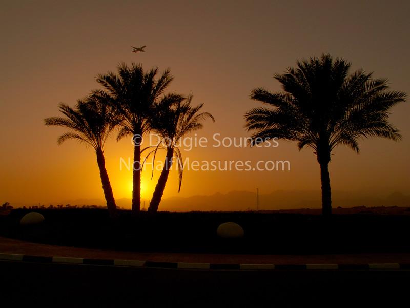 'Sinai sunset'<br />  21 February 2011<br />  The Sun, Mountains, Trees, Plane, Hedge etc. etc.<br />  Sharm El Sheikh, Egypt