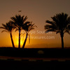'Sinai sunset'<br />  21 February 2011<br />  The Sun, Mountains, Trees, Plane, Hedge etc. etc.<br />  Sharm El Sheikh, Egypt