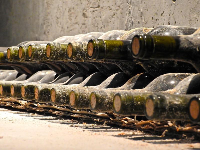 Indomita Vineyard Wines, Chile