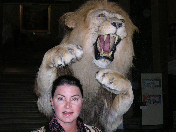 CAUGHT BY A LION IN VIENNA