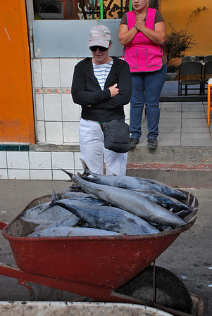 FISH IN A WHEEL BARREL, ENSENADA