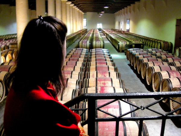 OVERLOOKING THE BARRELS AT CHATEAU MARGAUX