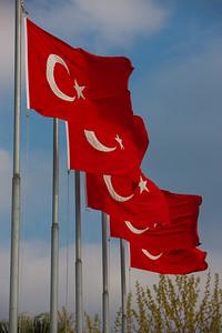 Turkey-3-30-08-31883