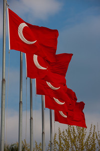 Turkey-3-30-08-31881