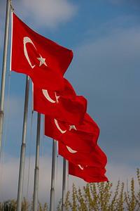 Turkey-3-30-08-31879