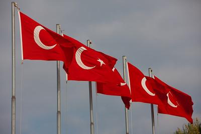 Turkey-3-30-08-31884