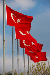 Turkey-3-30-08-31882