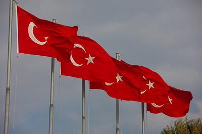 Turkey-3-30-08-31886