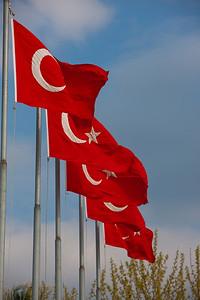 Turkey-3-30-08-31880