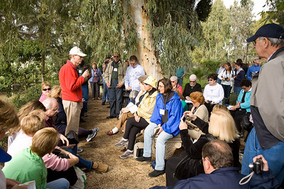 ISRAEL-03-2007-3854