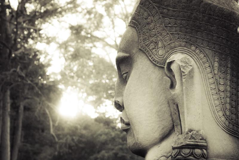 Glimpse of wisdom