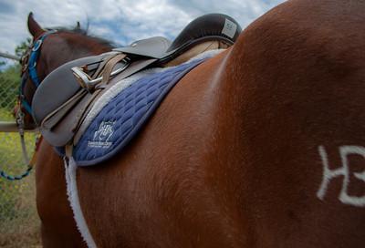 TRC - Therapeutic Riding Center - HB