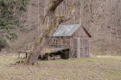 THE WOODMANS SHED2