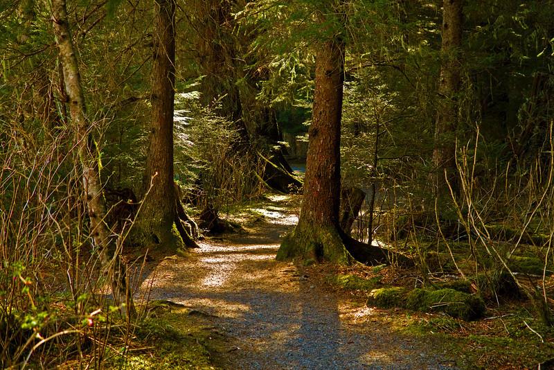 Path 4-11-10