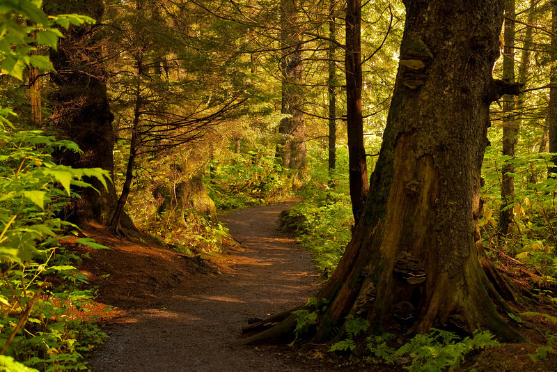 September Path
