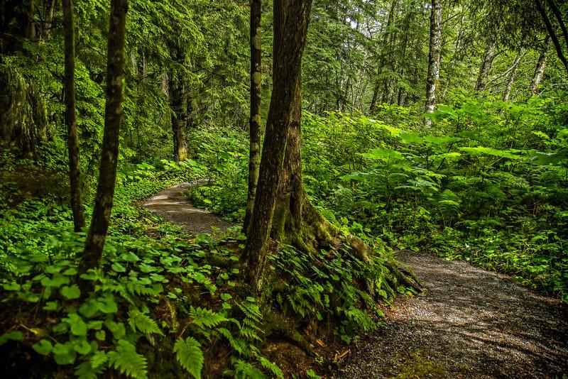 Winding Path 7-10-13