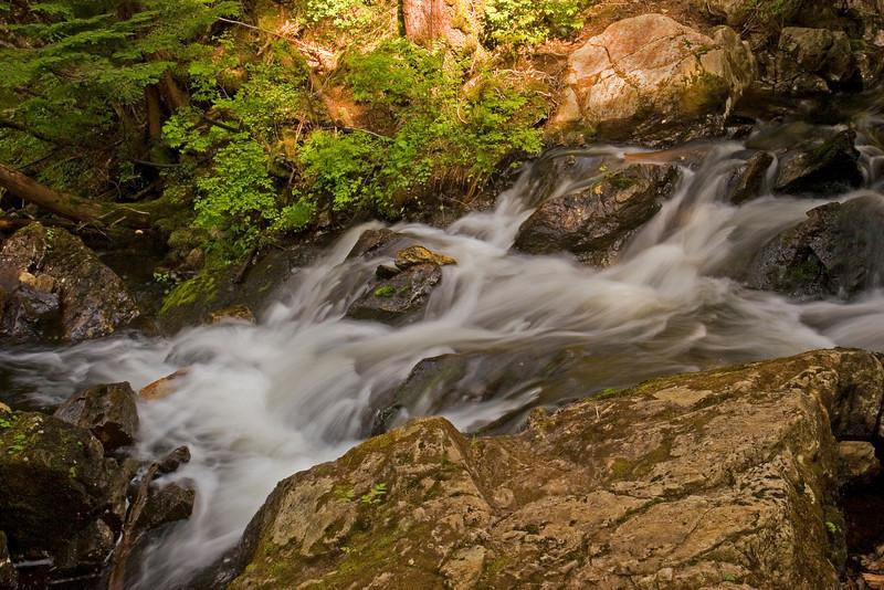 Thimbleberry Creek1