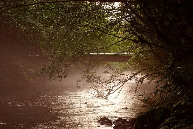 Foggy Bridge2