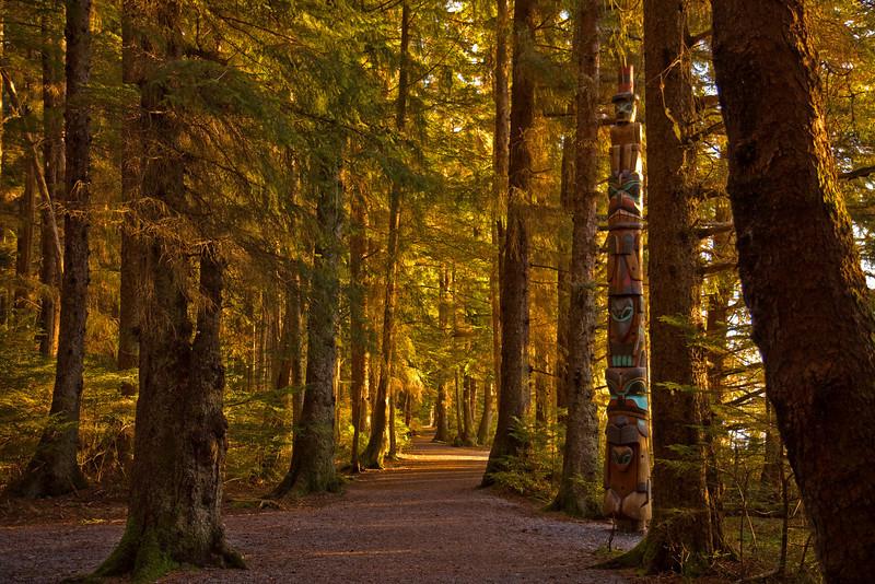 November Path