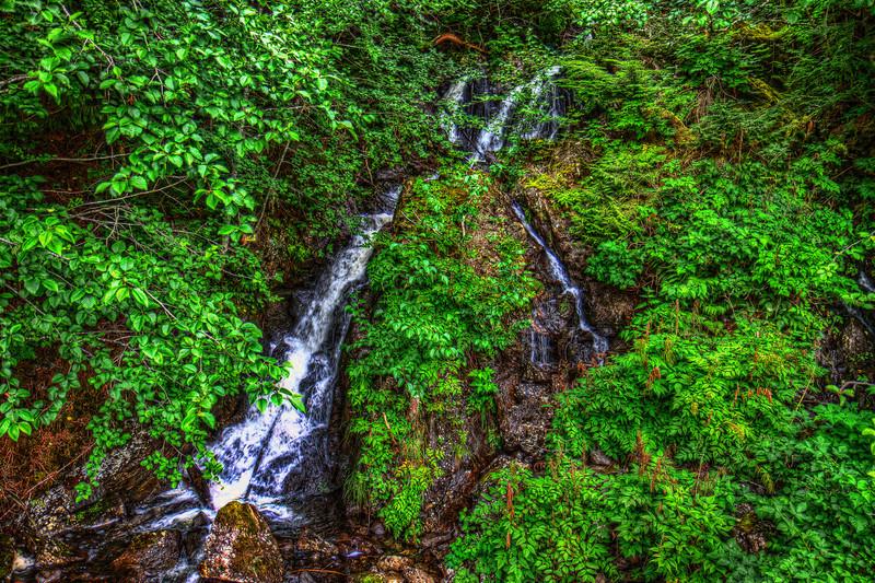 Thimbleberry Creek 8-2-11