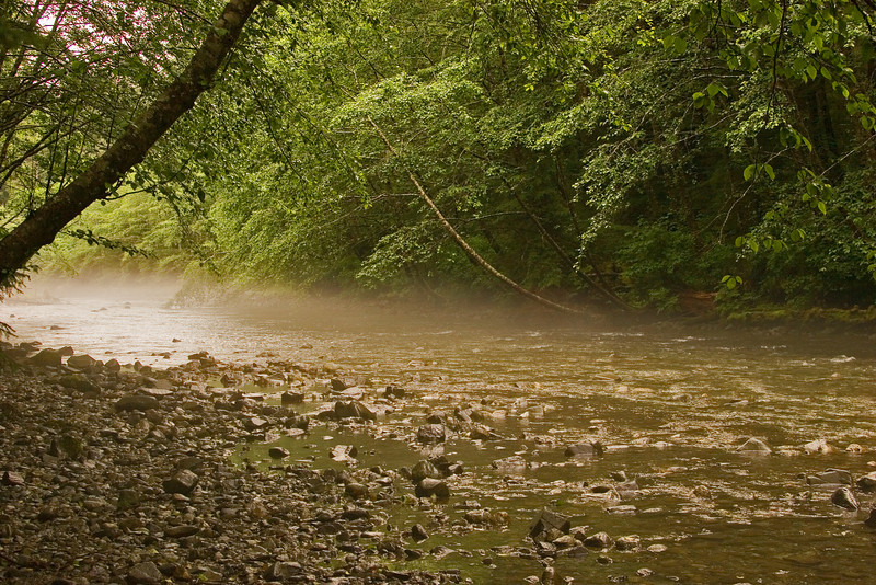 Foggy River2