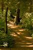 Inviting Path