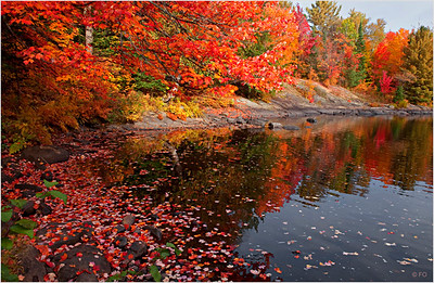 """Print title : """" RED RELECTIONS """""""