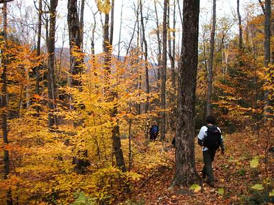 Fall colors, FKNA.