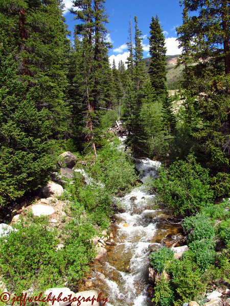 The not-so-dry creek in Dry Gulch.