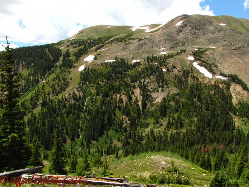 Mt. Trelease.
