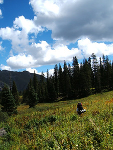 Back down in the lower basin, Ryan thwacks through a meadow to reach our campsite.