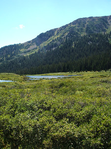 Generic Colorado alpine scenery. Life could be worse.  For instance, it could be occurring in Rochester.