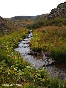 Alpine stream.