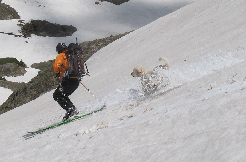 After a thoroughly enjoyable descent, we got a few more good turns on the lower angled slopes leading to the flats.  Out of sight from Ranger Dick, Marley finally got to join in on the fun.