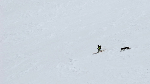 Our second big line was the huge bowl that funnels into the Roberts Creek drainage.  We skied the north facing part of the bowl and found fantastic snow.  Amy and Zippy taking first tracks. Photo: L.Hall