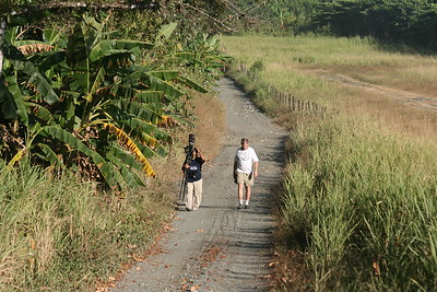 On the road alongside the Carate Landing Strip while staying at Lookout Inn on Osa Peninsula near Corcovado National Park, Costa Rica, 1-28-09