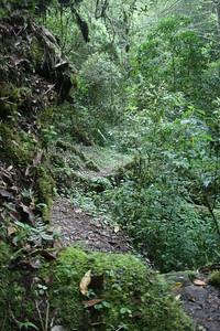Grounds, Landscapes, Trails