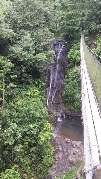 Waterfall & Swinging Bridge