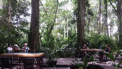 Cafe at