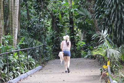 Rescate Wildlife Rescue Center (Zoo Ave), La Garita, Costa Rica