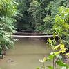 Little Stream & Foot Bridge