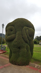 Modern Art Head?