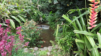 The SPA was exceptional! Built into a garden.