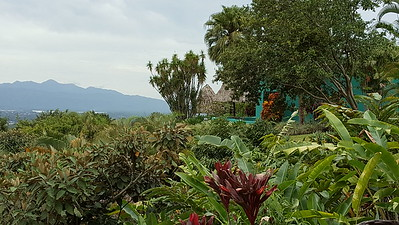 Villas are Blended in with Gardens and the Farm & Forest
