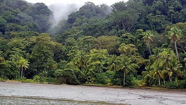 Golfito Bay