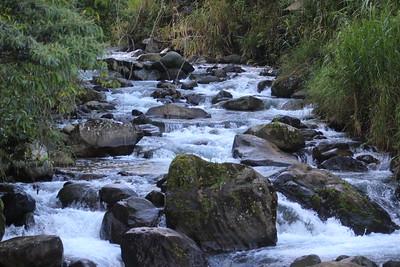 Rio Macho
